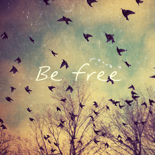 doves-away-be-be-free-favim-com-590971