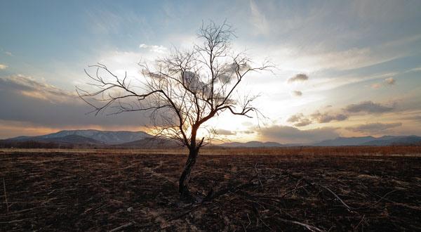cambio-climc3a1tico